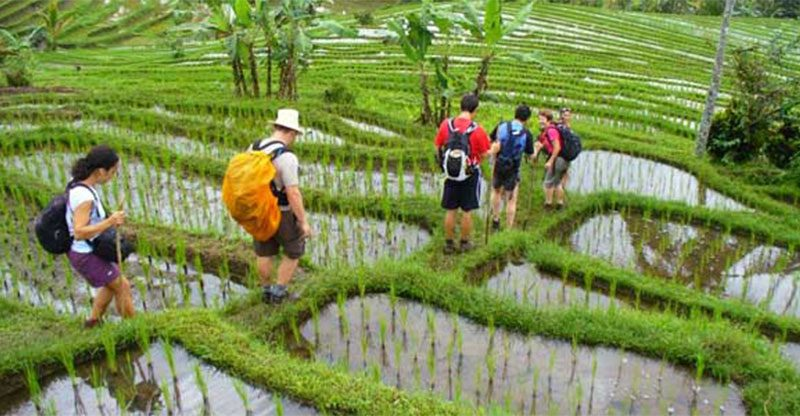 Secret Garden Trekking Of Sambangan Village2