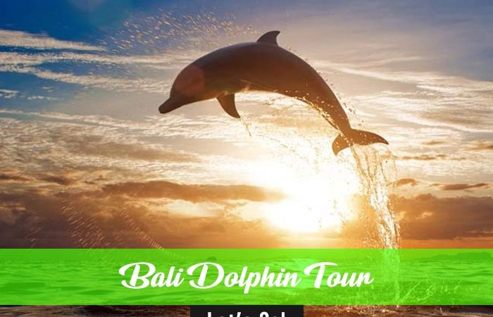 All in Awesome Bali Adventure Bali Travel Deals