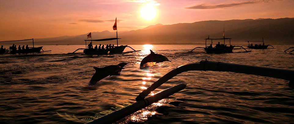 LOVINA PACKAGE Bali Travel Deals